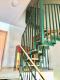 9,1% Rendite - Gut vermietete 2-Zimmer-Altbauwohnung in guter zentraler Lage - Treppenaufgang